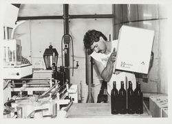 David Seghesio lines up the empties on the bottling line