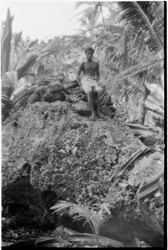 Man on shrine on top of coral outcropping