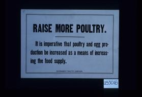 Raise more poultry. It is imperative that poultry and egg production be increased as a means of increasing the food supply. Government Poultry Campaign