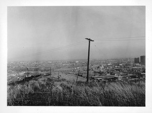 View from point above Chavez Ravine and Sunset Boulevard and just east of Innes Avenue, looking southeast over city of Los Angeles, 1937