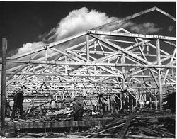 Wrecking of the Sebastopol Apple Growers Union packinghouse in 1956 to make room for the construction of the new Veterans Memorial Building on High Street
