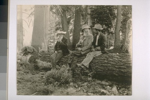 [John Muir and two other men, sitting on a log.]