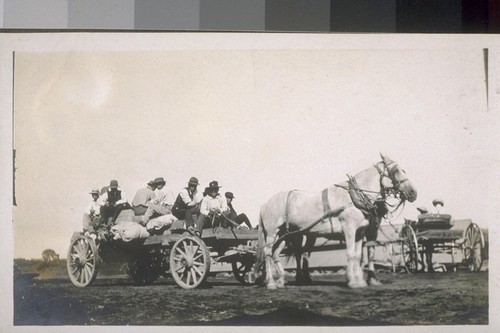 Ryde. Jap farm hands. [Japanese laborers riding in horse-drawn wagon.]