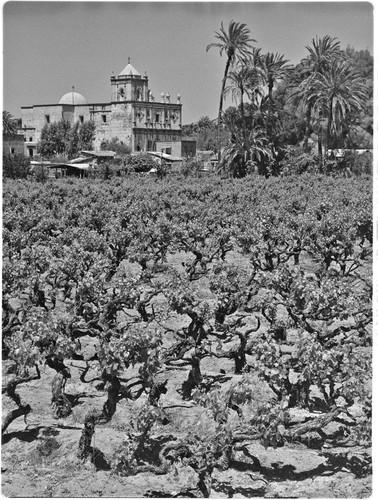 san ignacio de sabaneta buddhist dating site San ignacio de sabaneta is the capital and a municipality of santiago rodriguez  in the  edit links this page was last edited on 1 may 2018, at 00:11 (utc.