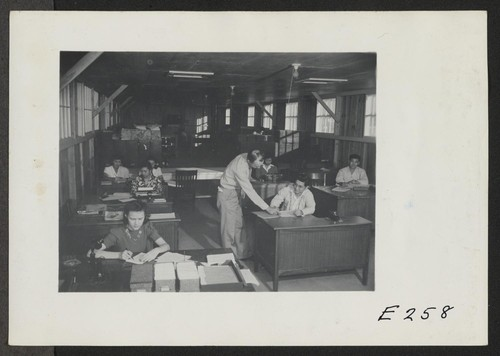 A view showing the Housing Department at this relocation center. (L to R) Virginia Shilby, secretary. John H. Tucker, Housing. Photographer: Parker, Tom Denson, Arkansas