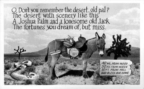 Oh Don't You Remember the Desert, old Pal?
