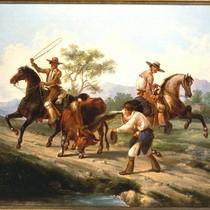 Native Californians lassoing a steer