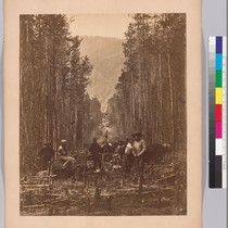 [Cutting the boundary line along the right bank of the Moyie River.]