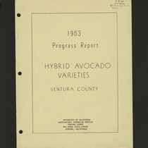 1963 Progress Report Hybrid Avocado Varieties Ventura County