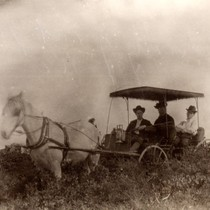Horse-drawn carriage near Camp Ho Ho in Larkspur, circa 1895 [photograph]