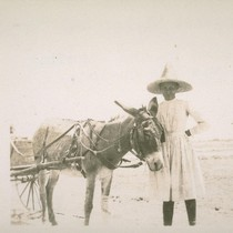 "Margaret Miller and ""He-Haw"". Hitched up and standing as was his custom"