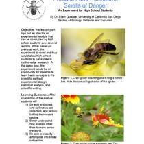 Predators and Pollinators: Smells of Danger