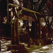 Entrance gate for Muir Woods, circa 1935 [postcard negative]