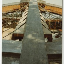 Construction of roof, steel cables and concrete arch , Janko, Dr. and ...