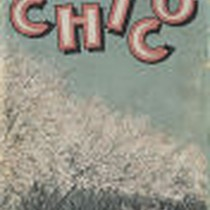 Chico, California: A Pamphlet