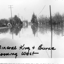 1955 Flood of Kaweah River, Visalia, Calif