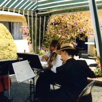Band playing at Vince and Patricia Whiting's sixth wedding