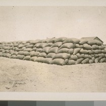 Sacks of wheat, cut and threshed and sacked by the combined harvester. ...