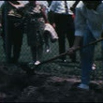 Asphalt Friday 6-13-1969 and Tar Pits Activities