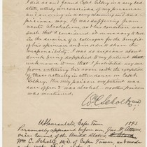 Affidavit by physician William C. Schultz