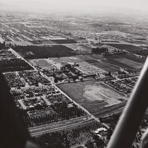 Aerial view of Citrus