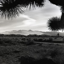 Calif. Desert near Victorville, Bill Nunes Place