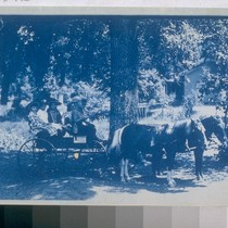 [Horse and cart with children in it - the cart has a ...