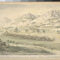 Cattle-drove (northward-bound for a market) passing the valley of Santa Barbara. (cf. ...