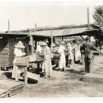 Women and men crating peaches in Reedly, Fresno County, California