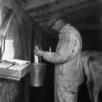 Cow Tester C.C. Goodale at the Dan Bondietti Ranch, Tomales, Fall 1923 ...