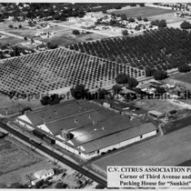 Aerial Of Chula Vista Citrus Association Plant