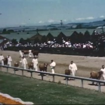Humboldt County Fair 1948