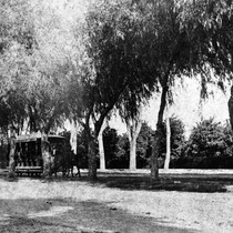 Photograph of a horse-drawn omnibus on Magnolia Avenue, Riverside, California