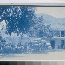 [Blue Lake Hotel with horse and buggy in front]