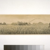 Threshing rice, Fair Ranch, Knights Landing - 1916