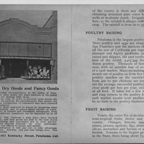 Advertisement for and exterior view of Frazer and Company, Dry Goods, Petaluma, ...