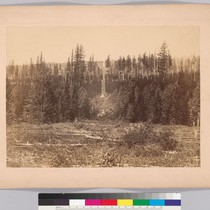 [Boundary line cut with cairn at Kishenehn, looking west, 1861.]