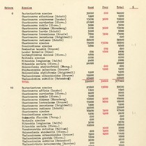 1940 Gulf of California Expedition Station 175 List of Species