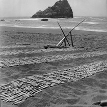 Howinquit: Surf fish drying, in the Smith River pattern. A modern print ...