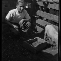 Child Kneeling Down Posing for Picture with Small Pig