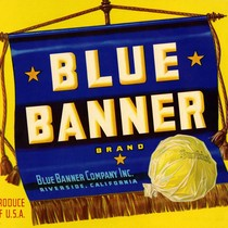 Blue Banner Company Inc., Blue Banner Brand