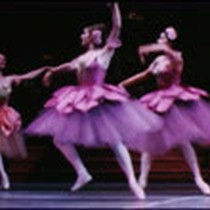 Amateur footage of Nutcracker presented by San Francisco Ballet