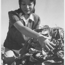 Momayo Yamamoto, formerly a farm worker in Fresno County, California. At present, ...