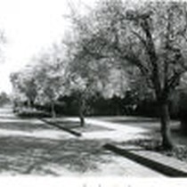 10th Street between Indian Hill and Oxford, Claremont, California 91711