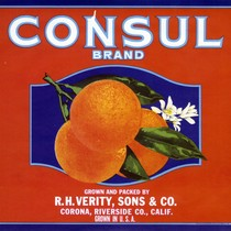 "Crate label, ""Consul Brand."" Grown and packed by R.H. Verity, Sons & ..."