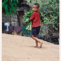 Hmong boy with vegetables