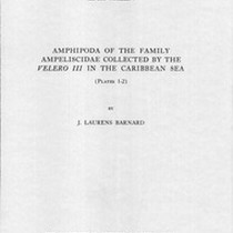 Amphipoda of the family Ampeliscidae collected by the Velero III in the ...