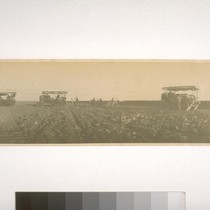 Yolo County - District 108 - 1915. Ditcher being pulled by two ...