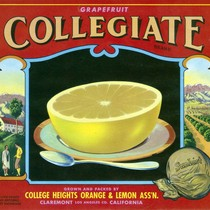 "Crate label, ""Collegiate Brand."" Grown and packed by College Heights Orange & ..."