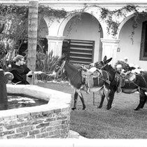 Blessing of the Animals traditional ceremony at Mission San Luis Rey in ...